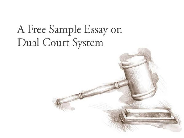 A Free Sample Essay on Dual Court System